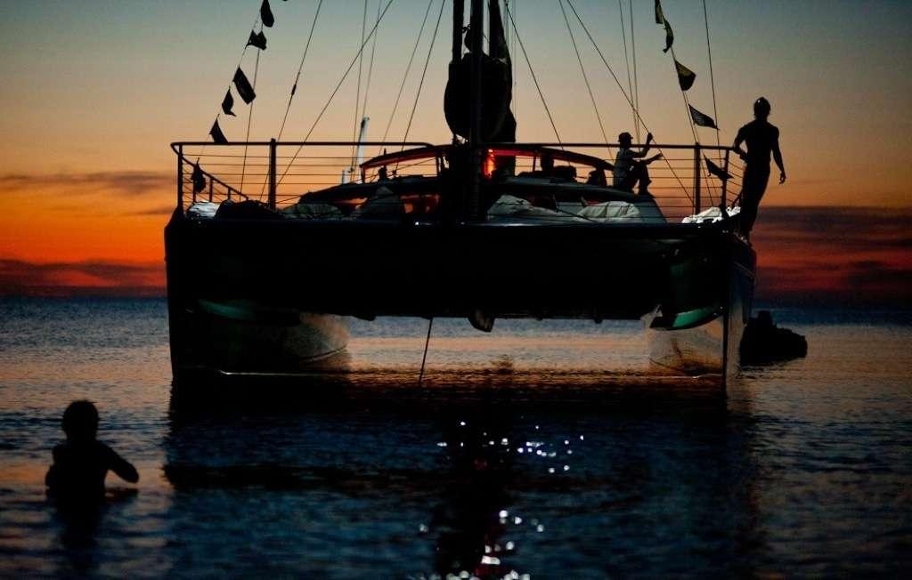 Heron Sailing